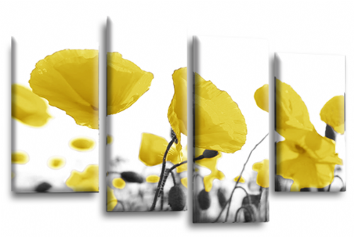 Large Floral Flowers Yellow Poppy Canvas Wall Art Pictures Split Panel